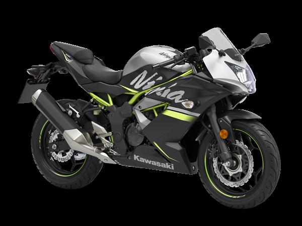 Kawasaki Ninja 125 Gris